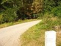 Grunewald - Verbindingschaussee - geo.hlipp.de - 28460.jpg