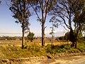 Guadaloupe, Grande, 90000 Tlaxcala, Mexico - panoramio.jpg