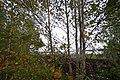 Gus-Khrustalny District, Vladimir Oblast, Russia - panoramio (34).jpg