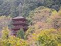 HASE Temple - panoramio (1).jpg