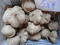 HK SYP Best of Best Vegetable Pueraria roots Aug-2012.JPG