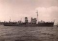 HMS Delphinium (K77).jpg