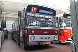 Haags Bus Museum 333 65-FB-65.JPG