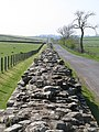 Hadrian's Wall west of Birdoswald (3) - geograph.org.uk - 1357901.jpg