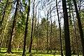 Hajnówka, Poland - panoramio (138).jpg