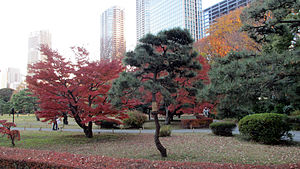 Hamarikyu Gardens - Image: Hama Rikyu Autumn