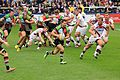 Harlequins vs Sharks (10509415135).jpg