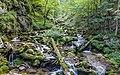 Hartelsgrabenbach Stream, Gesäuse National Park, Ennstaler Alpen, Austria 01.jpg