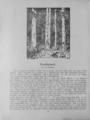 Harz-Berg-Kalender 1920 033.png