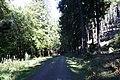 Harz Wanderung Stecklenberg - Rundweg über das Wurmtal und der Hochfläche - panoramio (2).jpg