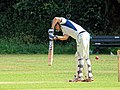Hatfield Heath CC v. Takeley CC on Hatfield Heath village green, Essex, England 45.jpg