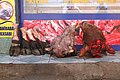 Heads and Hoofs for Sale outside Butcher's Shop - Dogubayazit - Turkey (5804137327).jpg