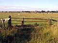 Hedon's former Aerodrome - geograph.org.uk - 907247.jpg