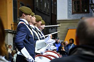 Home Guard (Sweden) - Drummers of the Home Guard Band of Eslöv at the Royal Palace in Stockholm.