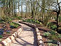 Hetland Garden Centre - geograph.org.uk - 153797.jpg