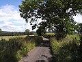 Hillhead Road, Rothbury - geograph.org.uk - 1425888.jpg