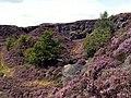Holybank Quarry Tintwistle.jpg