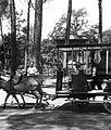 Horse, omnibus, boy Fortepan 28613.jpg