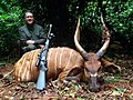 Hunter with his kill private game preserve Cameroon 2017.jpg