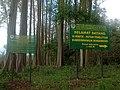 Hutan Pelangi Sumberwringin.jpg