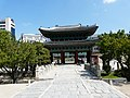 Hyehwa fall 2014 055 (Changgyeonggung).JPG