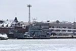 Hylje Eteläsatamassa 1.JPG