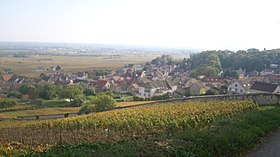 Image illustrative de l'article Volnay (AOC)