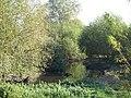 In deepest Lewisham - geograph.org.uk - 1035754.jpg