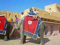 India - Jaipur2 - 013 - Taking an elephant up to the Amber Fort (2179238124).jpg