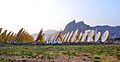 India One Solar Thermal Power Plant - India - Brahma Kumaris 11.jpg