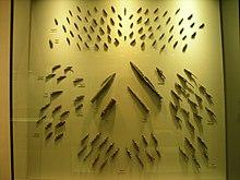 Photo montrant des pointes de flèches dans un meuble vitré.