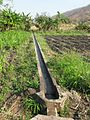 Irrigiation of fields.JPG