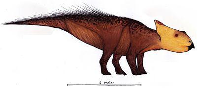 Ischioceratops.jpg