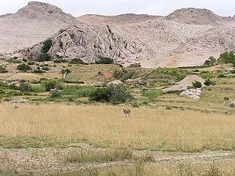 Pag (island) - Pag island landscape