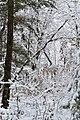Jackson County, WI - panoramio.jpg