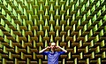 Jacob Kirkegaard, anechoic chamber, 2008.jpg