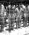 Japanese POWs Guam Aug 1945.JPEG