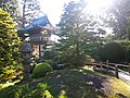 Japanese Tea Garden - panoramio (1).jpg