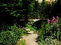 Jardí Botànic de València muntanyeta.JPG