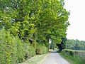 Jennings Wood Lane - geograph.org.uk - 418522.jpg