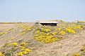 Jersey - Battery Lothringen 10.jpg