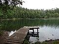 Jezioro Skarp - pomost na północno-zachodnim brzegu jeziora - panoramio.jpg