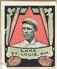 Joe Lake, St. Louis Browns, baseball card portrait LCCN2007683849.tif