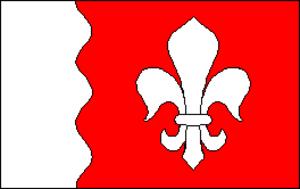 Koipsi - Image: Joelahtme vald flag