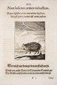 Johann-Vogel-Meditationes-emblematicae-de-restaurata-pace-Germaniae MGG 1026.tif