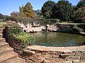 Johannesburg Botanical Garden Rose01.JPG