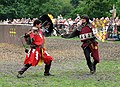 Jousting at Warwick Castle - geograph.org.uk - 562440.jpg