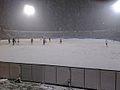 Jugadores Cruzados en cancha nevada.jpg