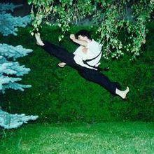 List of Taekwondo techniques - Wikipedia