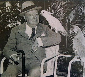 Jungle Island - Sir Winston Churchill with a sulphur crested cockatoo and a military macaw at Miami's Parrot Jungle in 1946.
